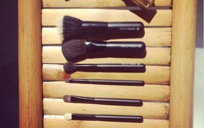 My Nicci Welsh Brushes